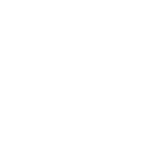 Navigating using charts and nautical instruments
